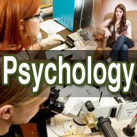 Psychology Majors working in labs.