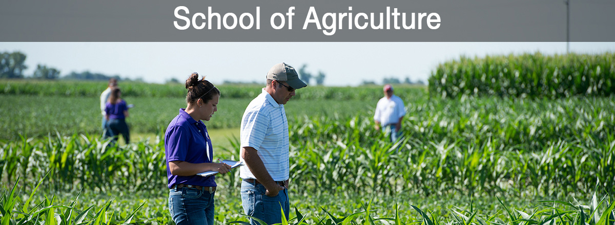 School of Agriculture