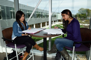 Students studying on the bridge.