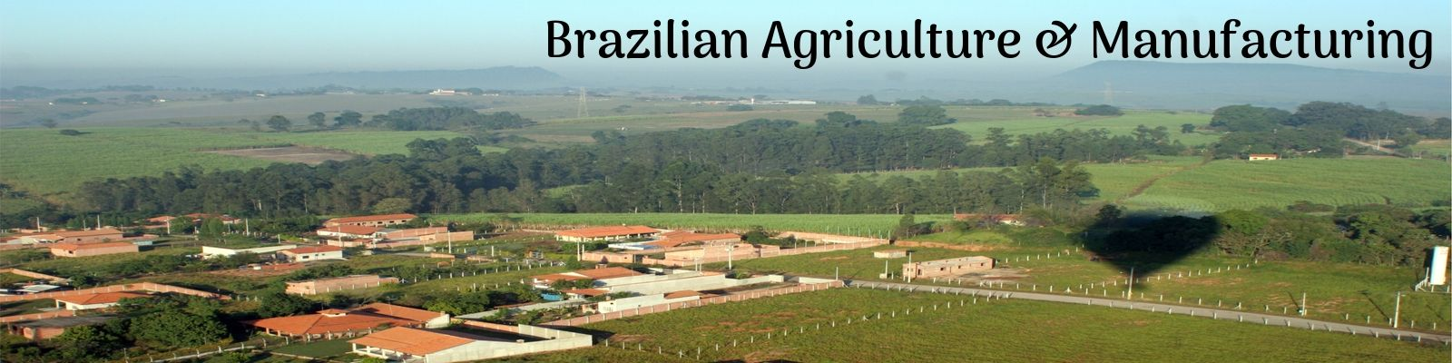 Brazilian Agriculture and Manufacturing