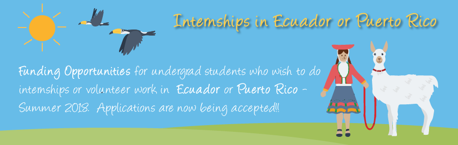internships-scholarships