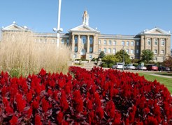 Photo of Sherman Hall with red flowers in front